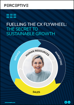 Fuelling the CX Flywheel: the secret to sustainable growth